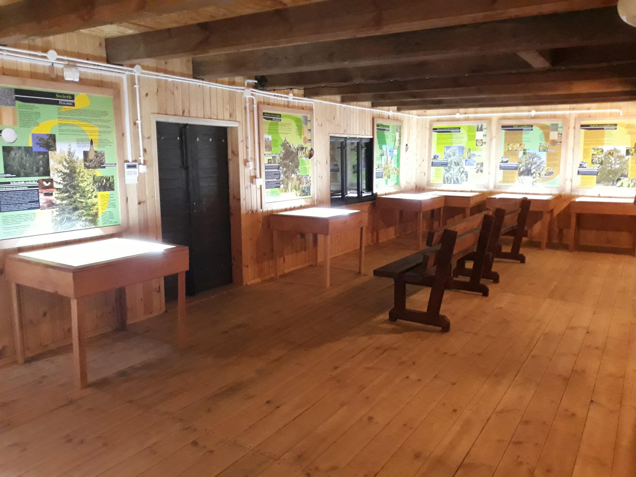 Wystawa Wokół nasion w Wyłuszczarni szyszek