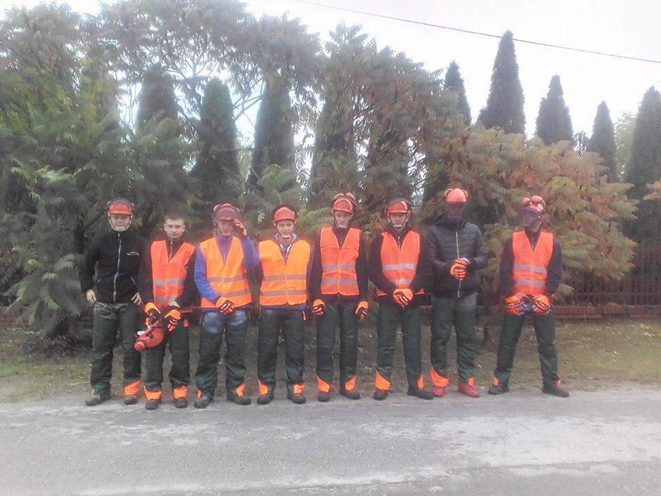 Kurs -Operator pilarki mechanicznej do scinki drzew